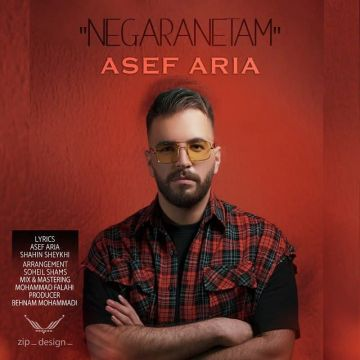 Download Asef Aria's new song called Negaranetam