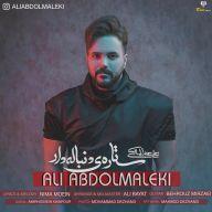 Download Ali Abdolmaleki's new song called Setareye Donbaleh Dar