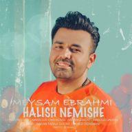Download Meysam Ebrahimi's new song called Halish Nemishe